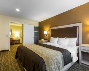 Comfort Inn Santa Cruz - King Suite
